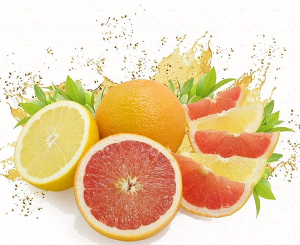 limon-greyfrut-i-apelsin