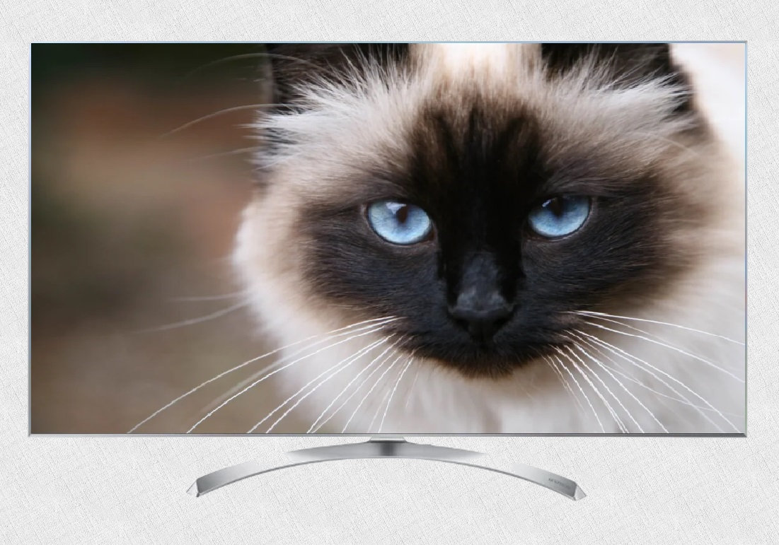 LG 49SJ810V модель телевизора 2019 года