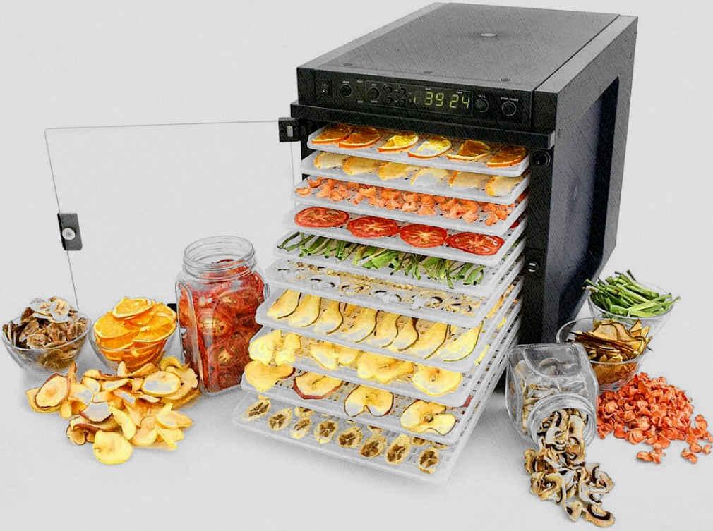 сушилка для овощей и одновременно и фруктов скоро будет у вас дома